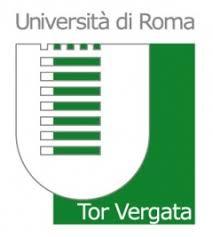 logo torve